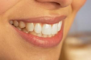 endodonzia-ostia